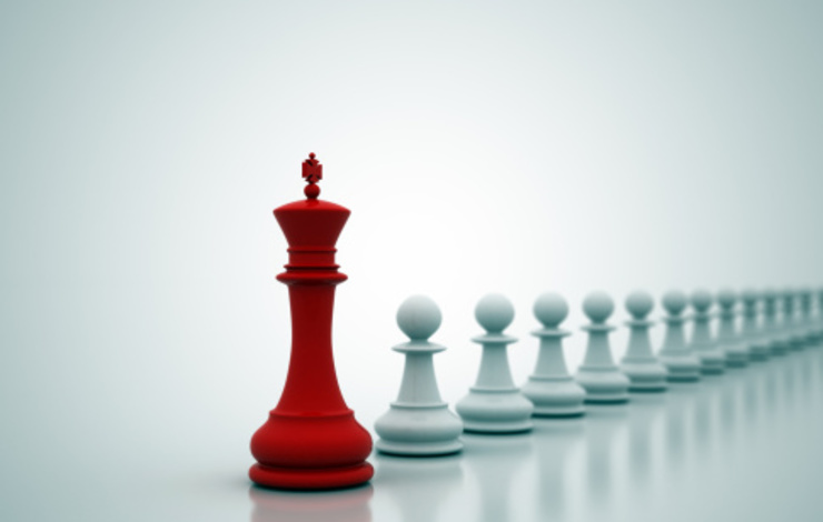 chess piece leadership