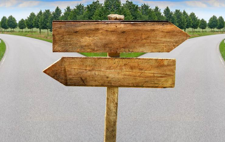 Splitting road with blank crossroad wooden blabk signs