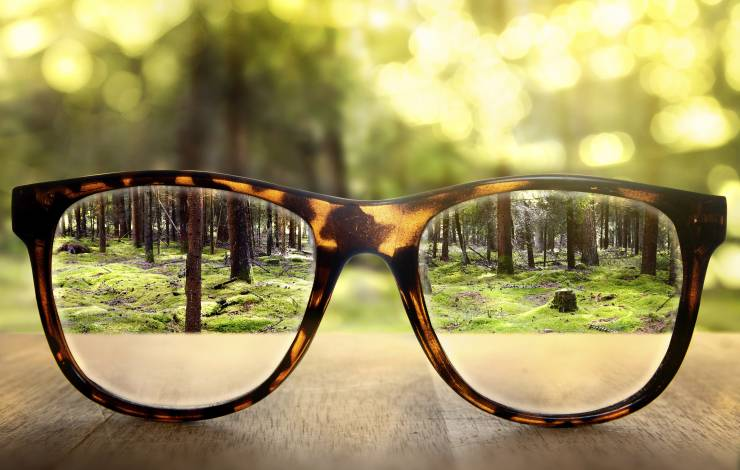 glasses looking in the woods