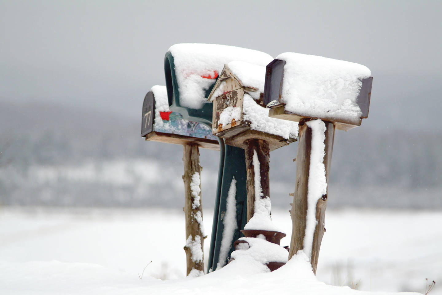 mailboxes covered in snow