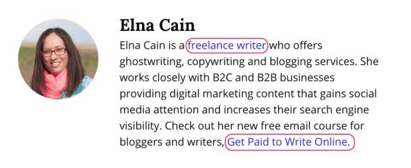 Freelancer bio example