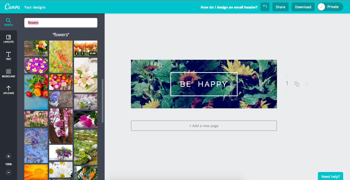 search for images in canva.png