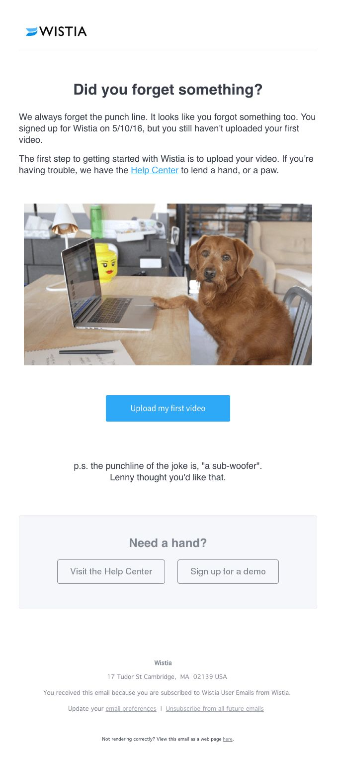 Wistia email screenshot